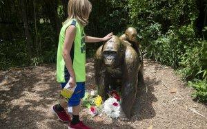 Cincinnati Zoo gorilla death: no child endangerment charges for mother