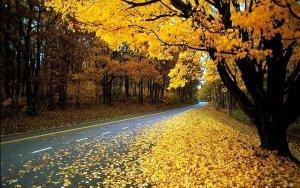 В Азербайджан пришла осень
