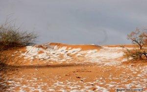 Saxara səhrasına qar yağdı - FOTO
