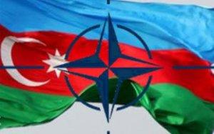 Запявление НАТО