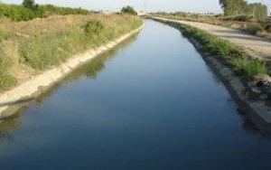 В Гусаре трактор упал в канал, водитель утонул