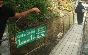 Взглянуть на природный водопад уже стоит денег - ФОТОФАКТ