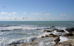 Минэкологии назвало загрязняющие берег Каспия центры отдыха