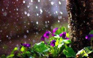 Синоптики предупреждают о нестабильной погоде